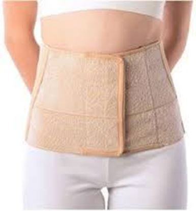 Picture of Vissco Abdominal Belt-8 Inches 0501 L