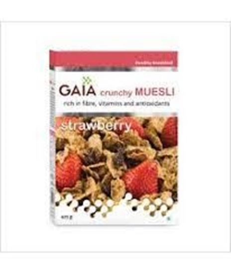 Picture of GAIA Crunchy Muesli Diet