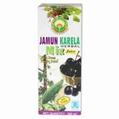 Picture of Basic Ayurveda Jamun Karela Mix Juice