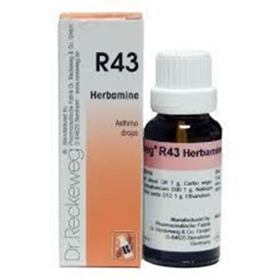 Picture of Dr. Reckeweg R43 (Herbamine) (22ml)