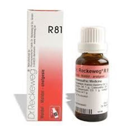 Picture of Dr. Reckeweg R81 (Maldol) (22ml)