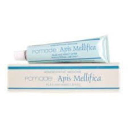 Picture of SBL Apis Mel Ointment (25g)