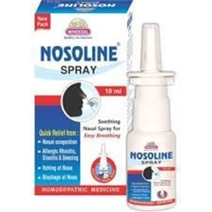Picture of Wheezal Nosolin Spray